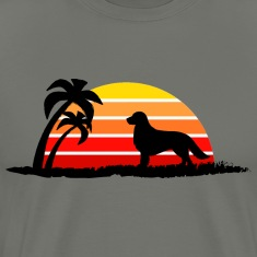 Golden Retriever on Sunset Beach
