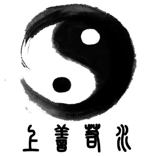 Chinese Tai chi2