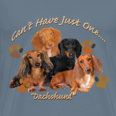 Dachshund Can't Have Just One