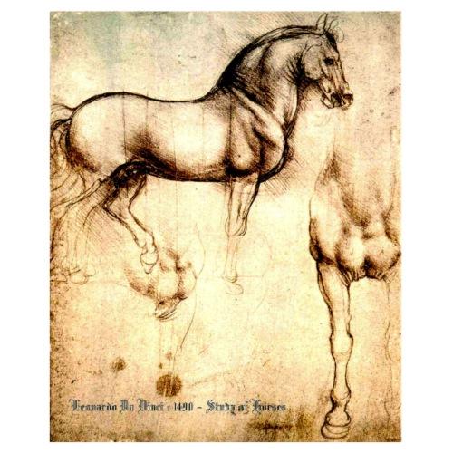 Leonardo De Vinci Horses
