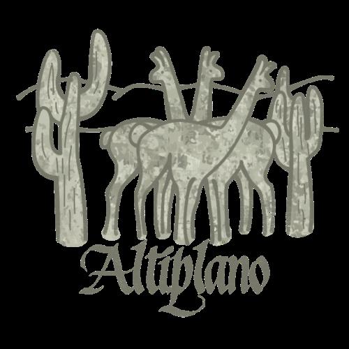 Altiplano's Guanacos