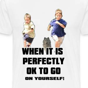 Perfectly OK T-Shirts - Men's Premium T-Shirt