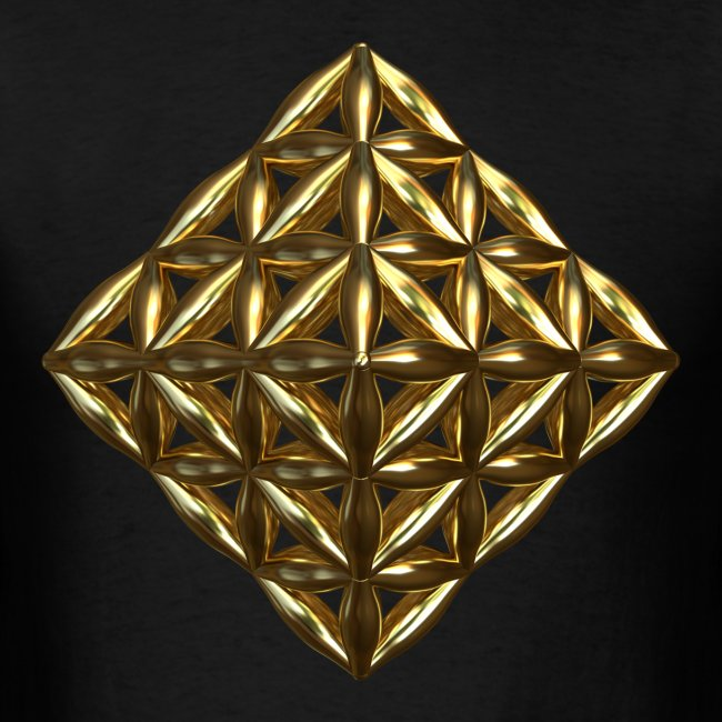 Flower Of Life Octahedron Ag