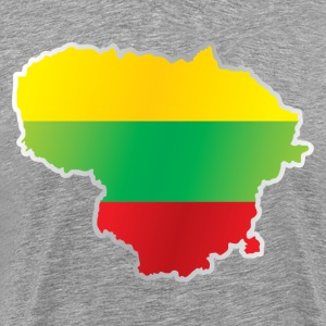 National territory and flag Lithuania T-Shirts - Men's Premium T-Shirt