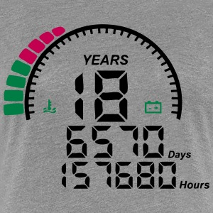 18 years anniversary counter Women's T-Shirts - Women's Premium T-Shirt