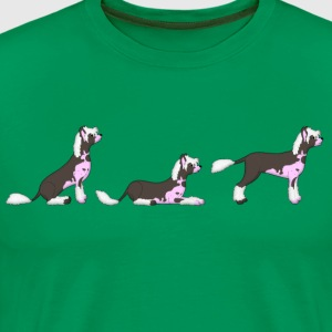 sit down stay hairless dog T-Shirts - Men's Premium T-Shirt