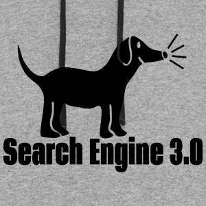 Search Engine Dog Hoodies - Colorblock Hoodie