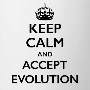 Keep Calm Evolution light