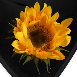 Sunflower Opening Caps - Bandana