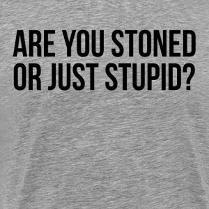 Are You Stoned Or Just Stupid FUNNY Sarcasm T-Shirts - Men's Premium T-Shirt