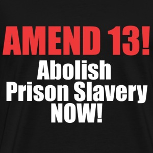 Amend 13 T-shirt - Men's Premium T-Shirt