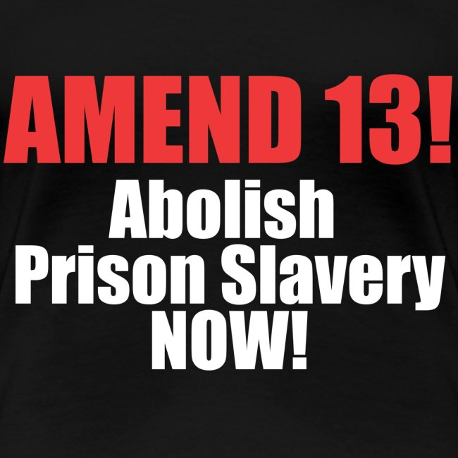 Amend 13 Fitted T-shirt