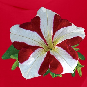 Red and White Petunia Caps - Bandana