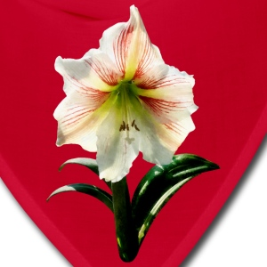 White Lilies With Red Stripes Caps - Bandana