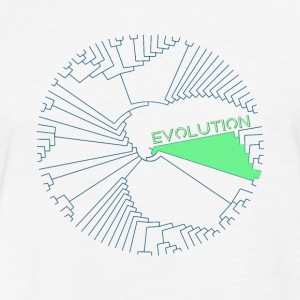 Evolution - Fitted Cotton/Poly T-Shirt by Next Level