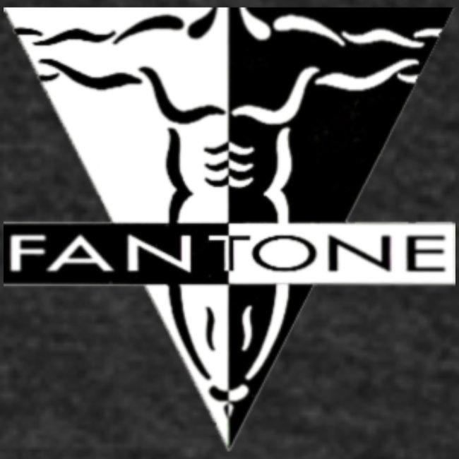 Fantone Fitness .COM