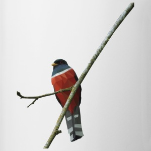 red trogon - Coffee/Tea Mug