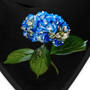 Blue Hydrangea With Leaves Caps - Bandana