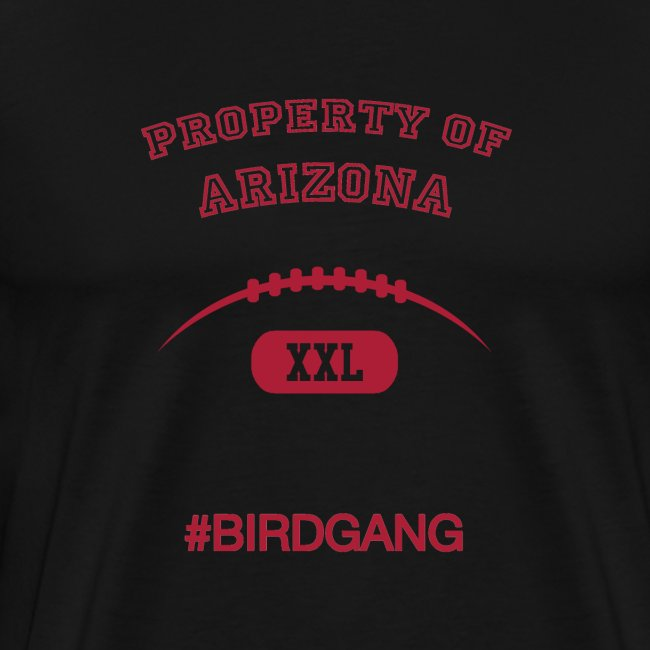 Property of Arizona ALT