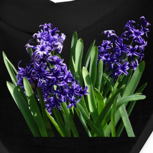 Two Purple Hyacinths Caps - Bandana