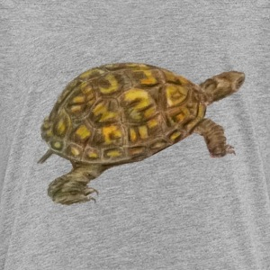 Box Turtle Toddler T-shirt Heather Gray - Toddler Premium T-Shirt