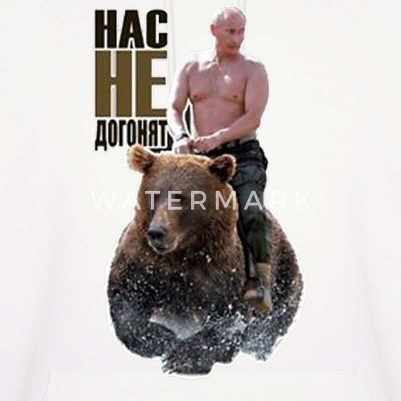 PUTIN riding a bear - Men's Hoodie