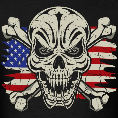 Skull Crossbones USA Flag