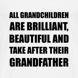 Grandchildren Brilliant Grandfather - Men's Premium T-Shirt