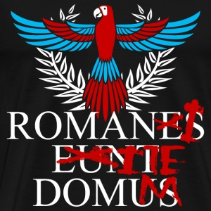 Romans T - shirt - Go home - Men's Premium T-Shirt