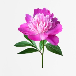 One Pink Peony Other - Mouse pad Vertical