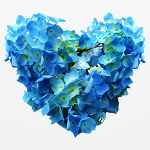 Blue Hydrangea Heart Other - Mouse pad Horizontal