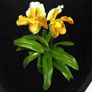 Two Yellow Slipper Orchids Caps - Bandana