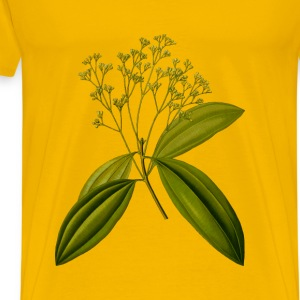 Chinese cinnamon (detailed) - Men's Premium T-Shirt