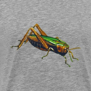 Common green grasshopper (isolated) - Men's Premium T-Shirt