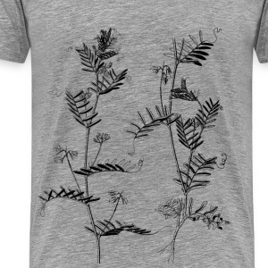Lentil plants - Men's Premium T-Shirt