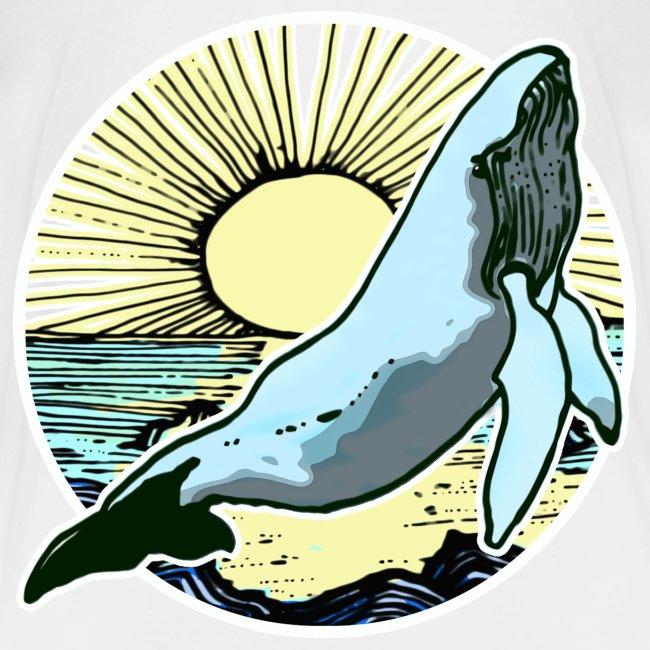 Sun rise whale