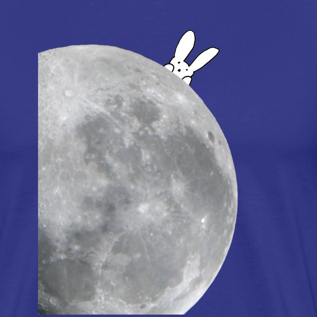 Bunny moon t-shirt