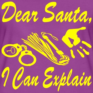 Dear Santa I Can Explain    - Women's Premium T-Shirt