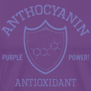 Anthocyanin Antioxidant