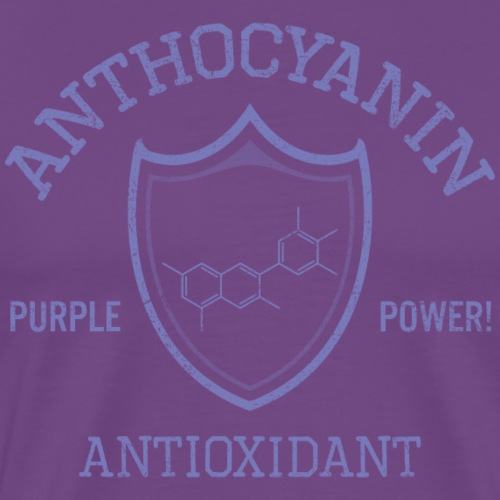 Anthocyanin Antioxidant