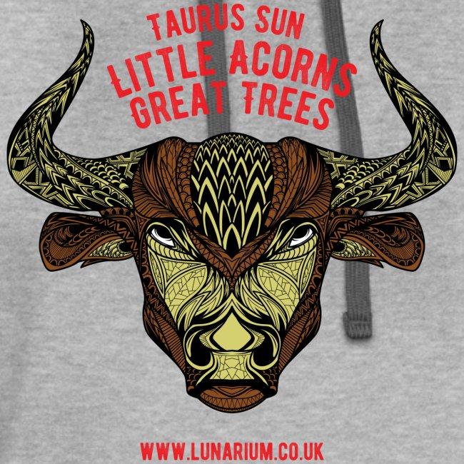 Taurus Sun Contrast Hoodie