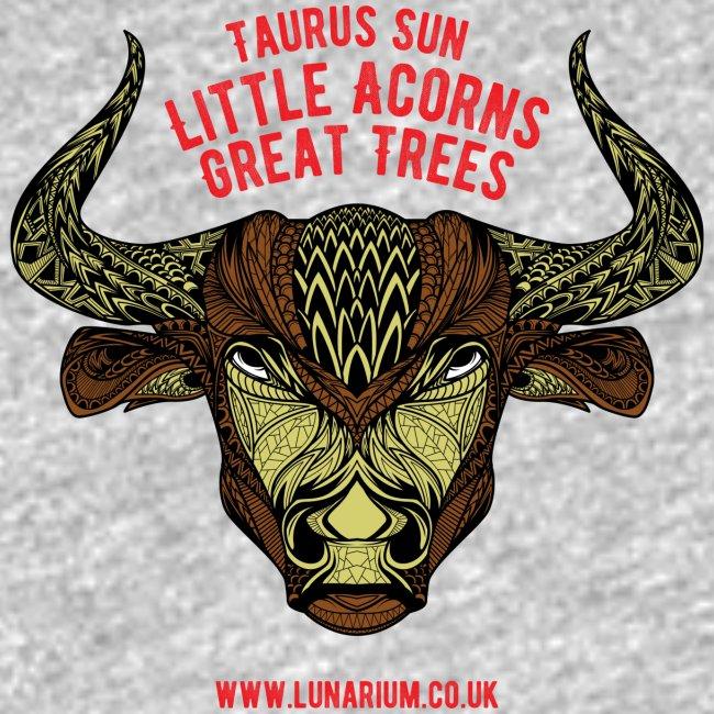 Taurus Sun Women's Premium Tank Top