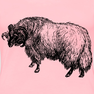 Blackfaced sheep - Women's Premium T-Shirt