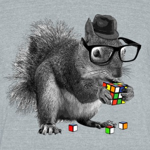 Rubik's Cube Hipster Squirrel - Unisex Tri-Blend T-Shirt by American Apparel
