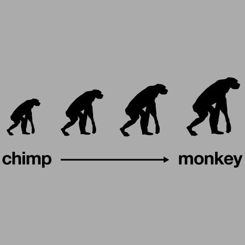 ChimpMonkey