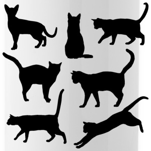 Black and white Cats Body language Sportswear - Water Bottle