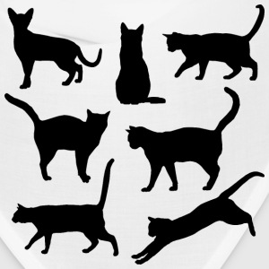 Black and white Cats Body language - Bandana