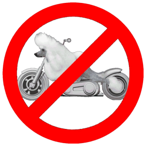 No Poodle Bikes (for dark