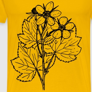 Thimbleberry - Men's Premium T-Shirt