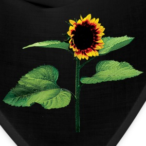Sunflower Profile Caps - Bandana